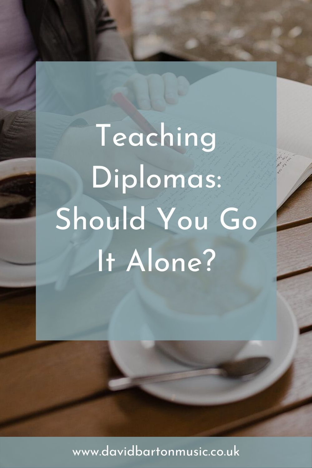 Teaching Diplomas: Should You Go It Alone? - Pinterest graphic